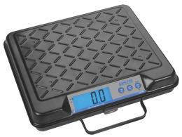 Electronic Floor and Bench Scales