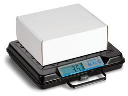 media/catalog/category/electronic-floor-and-bench-scales-3_1.jpg