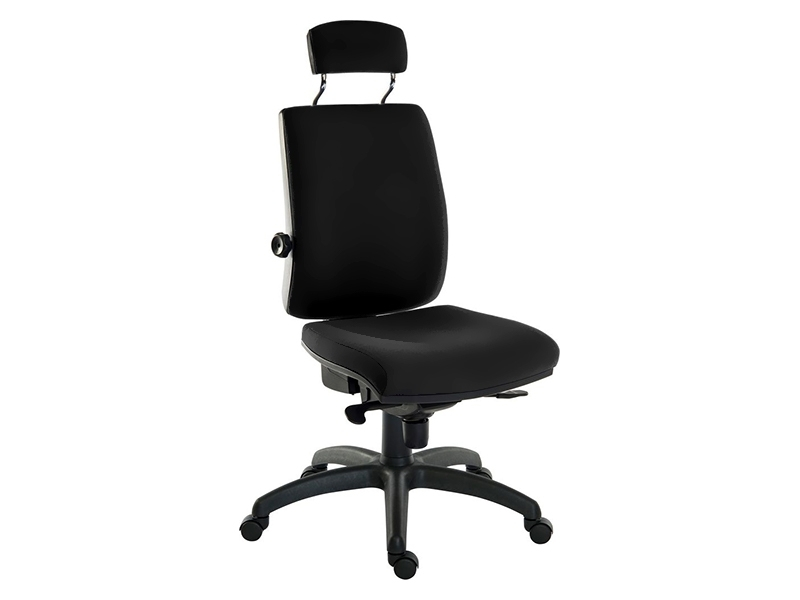 Ergo Plus24 Premier Head Rest Chair