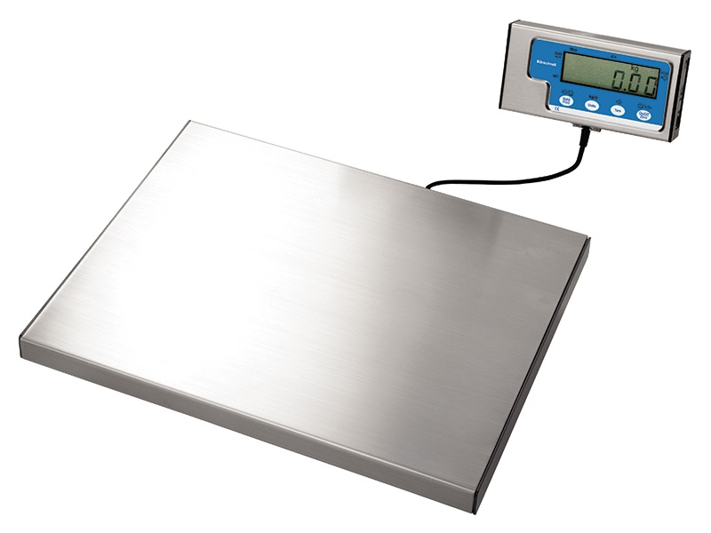 Portable Bench Scales