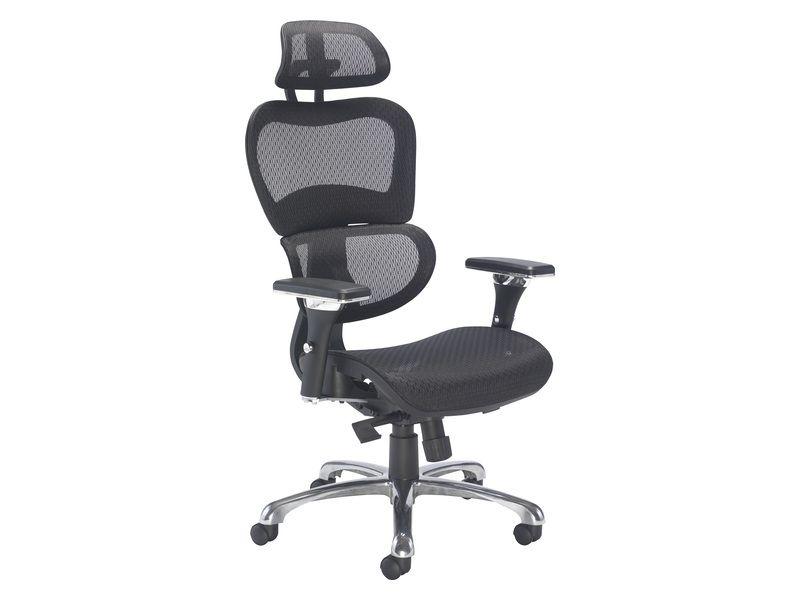 Ergonomic Chair With Headrest