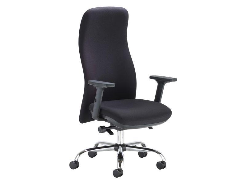 Ergonomic Posture Chair
