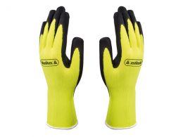 Appollon Gloves