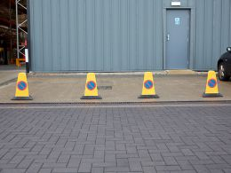 No Waiting / No Parking Cones