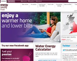Energy Saving Trust - information for green business
